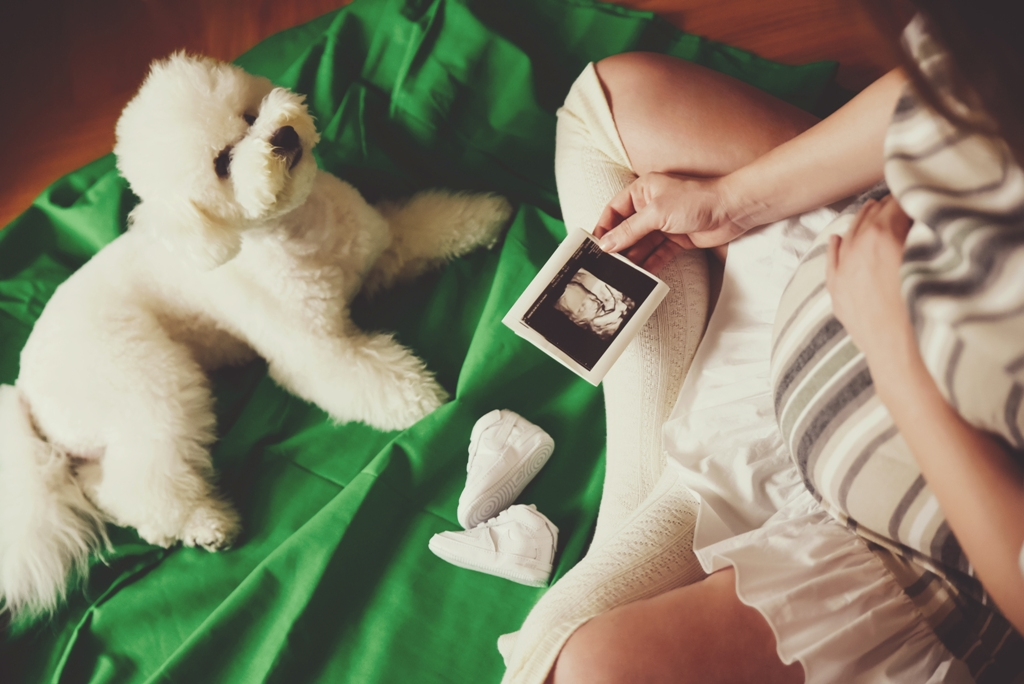 Fotografisanje trudnoće