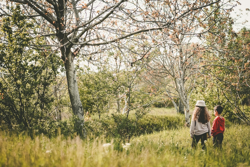 Fotografisanje u prirodi